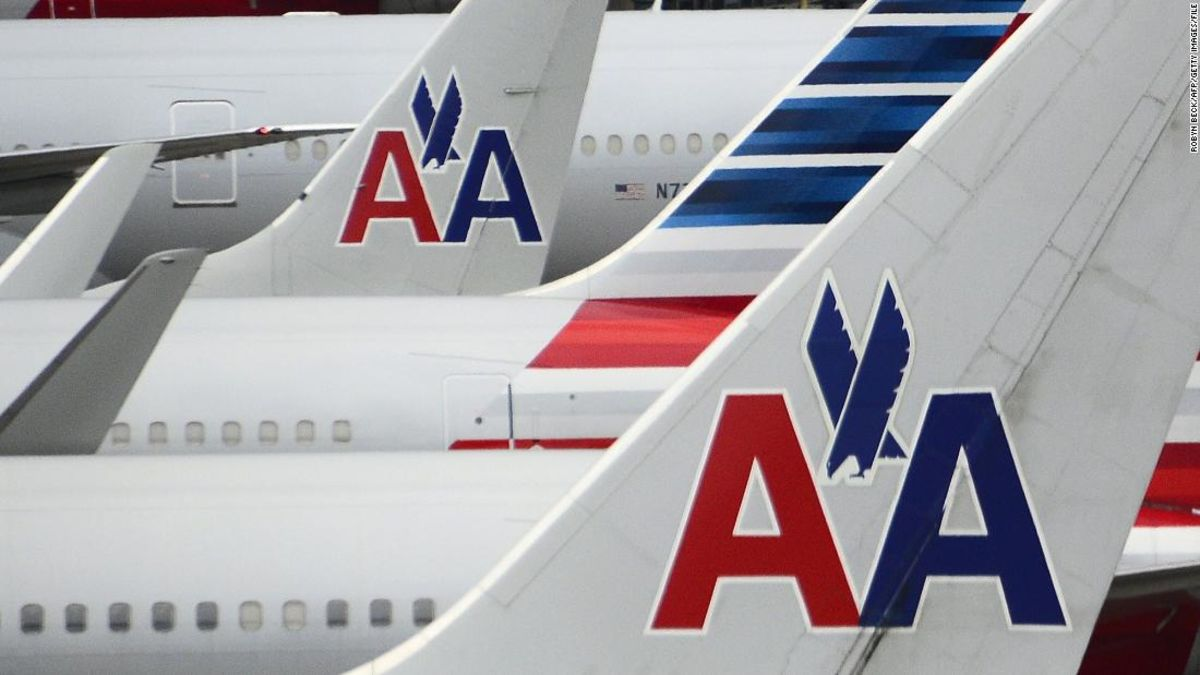 An American Airlines flight attendant had to get five stitches after an emotional-support animal bit him – CNN