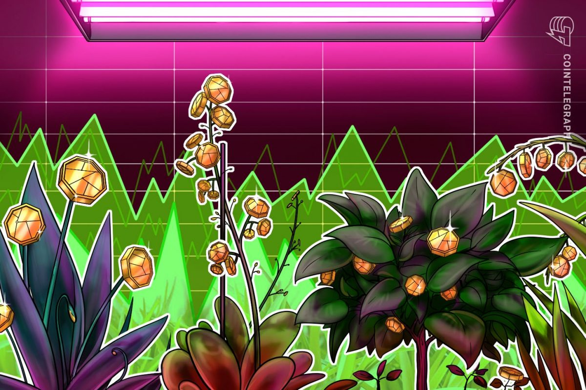 Here's Why Altcoins Bouncing as Bitcoin Retraced From $10K Is Bullish – Cointelegraph